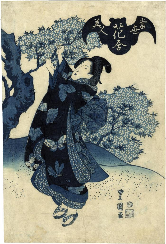 <i>Aizuri-e</i> of a <i>bijin</i> reaching up to grab a branch of a flowering cherry tree, from the series <i>Beauties of the Latest Fashion Compared with the Beauty of Flowers</i> (<i>Tōsei bijin hana-awase</i> - 當世美人花合)